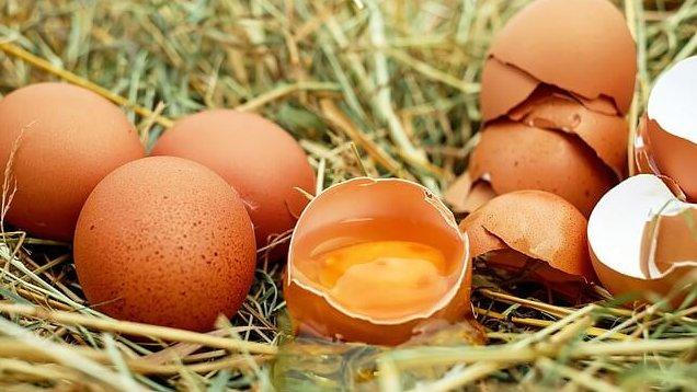伊勢原  寿雀卵